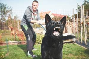 A man with his angry black dog. It is important to choose the right dog bite injury attorney